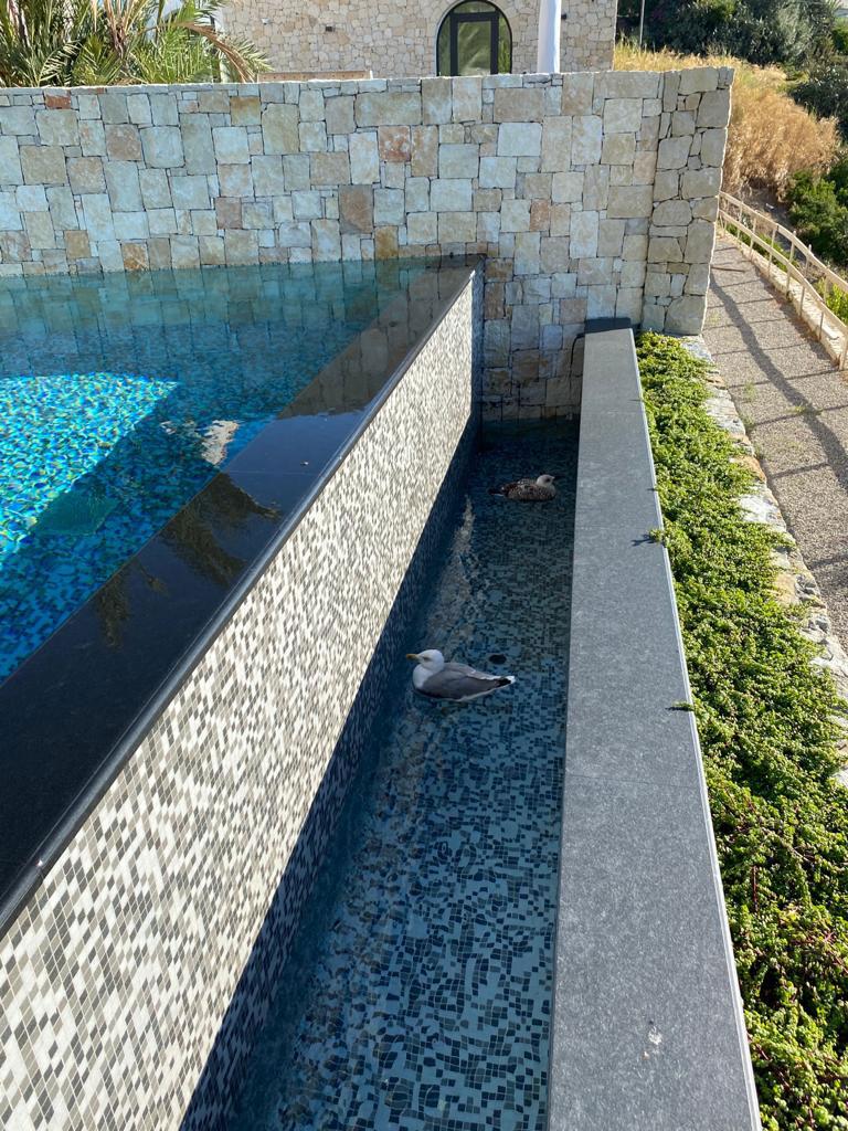 marco-sferrazza-impresa-edile-realizzazioni-piscine-6